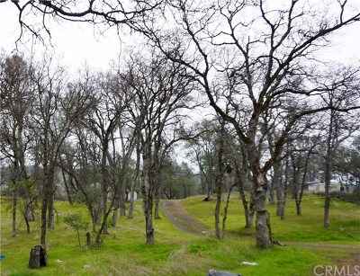 Oroville Residential Lots & Land For Sale: 55 Lower Gulch Road
