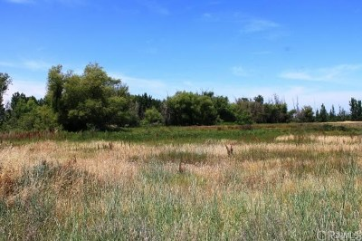 Butte Valley Residential Lots & Land For Sale: 154 Nelson Road