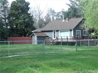 Orland Single Family Home For Sale: 6885 & 6887 County Road 6