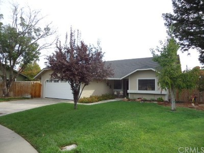 Chico CA Single Family Home For Sale: $385,000