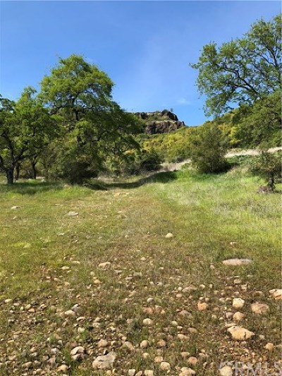 Chico Residential Lots & Land For Sale: Center Gap Road