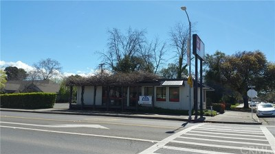 Commercial Lease For Lease: 221 Walker Street