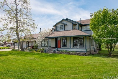 Durham Single Family Home For Sale: 171 Heavy Horse Lane