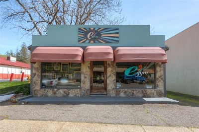 Butte County Commercial For Sale: 6294 Skyway