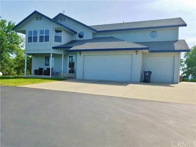 Red Bluff Single Family Home For Sale: 19015 Bonita Road
