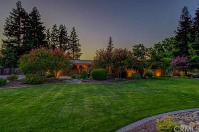 Chico Single Family Home For Sale: 424 W Shasta Avenue