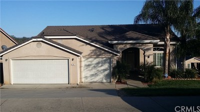 Oroville Single Family Home For Sale: 213 Mira Loma Drive