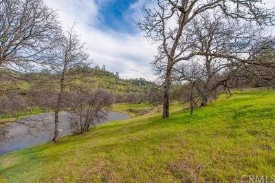 Chico Residential Lots & Land For Sale: 3571 Shallow Springs