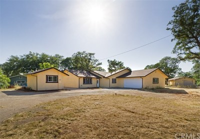 Oroville Single Family Home For Sale: 28 Sun Cloud Circle