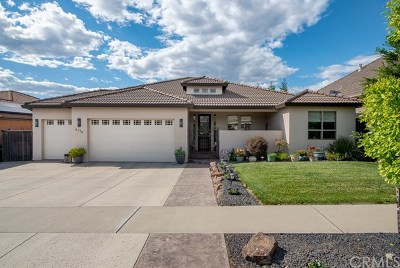Chico Single Family Home For Sale: 2770 Garden Valley