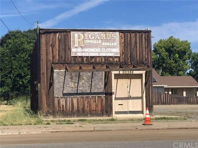 Butte County Commercial For Sale: 3035 Myers Street