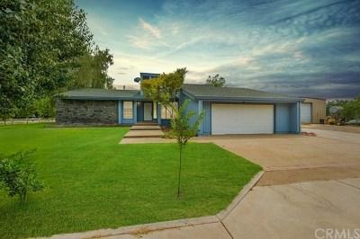Chico Single Family Home For Sale: 10225 Alberton Avenue