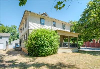 Chico Multi Family Home For Sale: 1005 Magnolia Avenue