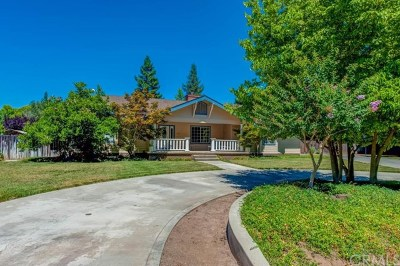 Chico Single Family Home For Sale: 3068 Willow Bend Drive