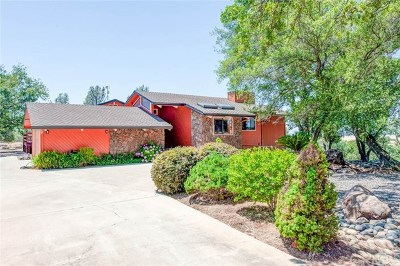 Chico Single Family Home For Sale: 6346 Cohasset Road