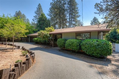 Paradise Single Family Home For Sale: 304 Valley View Drive