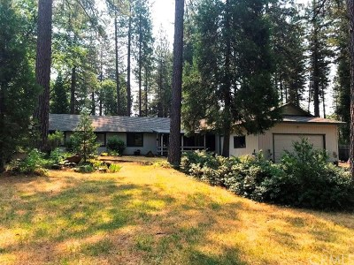 Forest Ranch Single Family Home For Sale: 4931 Contentment Lane