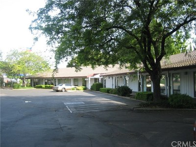 Butte County Commercial Lease For Lease: 389 Connors Ct #F