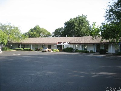 Butte County Commercial Lease For Lease: 389 Connors Ct