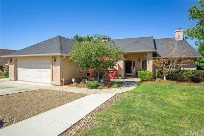 Chico Single Family Home Active Under Contract: 20 Kestrel Court