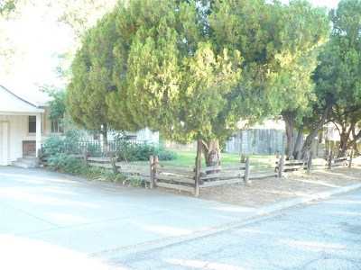 Red Bluff Single Family Home For Sale: 540 Sacramento Avenue