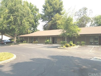 Butte County Commercial Lease For Lease: 392 Connors Court #C