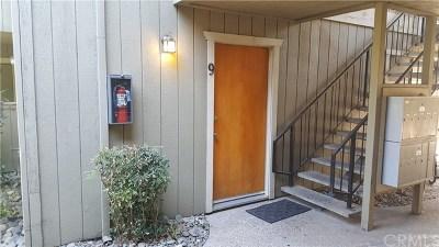 Chico Condo/Townhouse For Sale: 1244 Magnolia Avenue #9