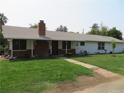 Willows Single Family Home For Sale: 720 E Walnut Street