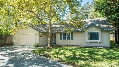 Chico Single Family Home For Sale: 1369 Woodland Avenue