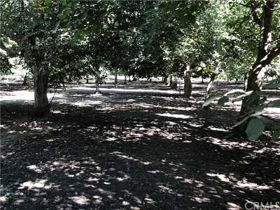 Chico Residential Lots & Land For Sale: Grape Way