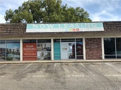 Commercial Lease For Lease: 245 Walnut Street