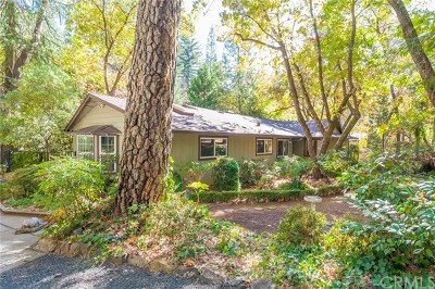 Paradise Single Family Home For Sale: 990 Central Park Drive