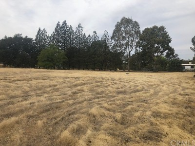 Tehama Residential Lots & Land For Sale: 17377 Stagecoach