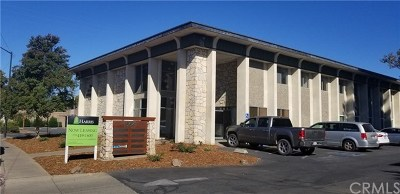 Butte County Commercial Lease For Lease: 564 Rio Lindo Avenue #204