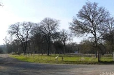 Oroville Residential Lots & Land For Sale: Willow Creek Drive