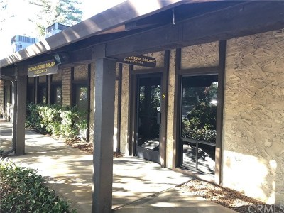Butte County Commercial Lease For Lease: 1074 East Avenue #S