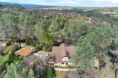 Corning Single Family Home For Sale: 16000 Rancho Tehama