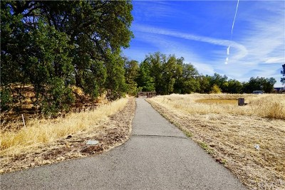 Chico Residential Lots & Land For Sale: 121 Skycreek Court