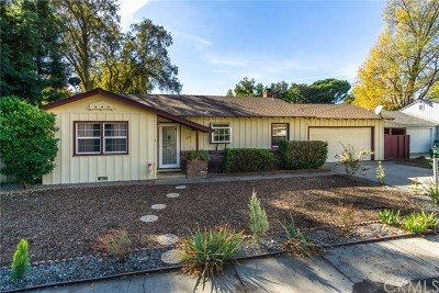 Chico Single Family Home For Sale: 805 Macy Avenue