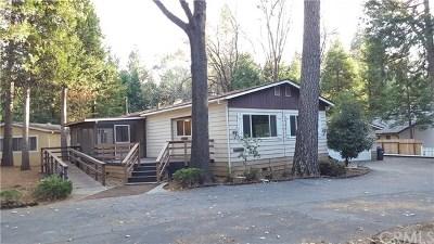 Magalia Single Family Home For Sale: 13929 Andover Drive