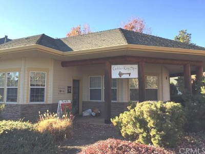 Butte County Commercial Lease For Lease: 150 Amber Grove Drive #150