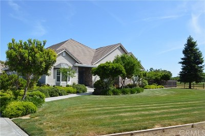 Orland Single Family Home For Sale: 6540 County Road 22