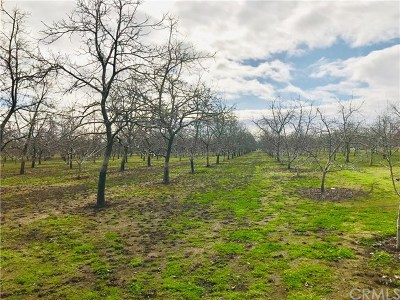 Chico Residential Lots & Land For Sale: Nord Ave