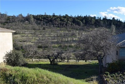 Chico Residential Lots & Land For Sale: 3579 Shadowtree Lane