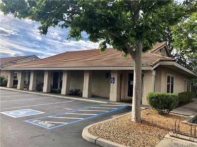 Chico Commercial For Sale: 1430 East Avenue #5