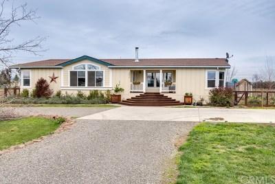 Chico Single Family Home For Sale: 14216 Kansas Lane