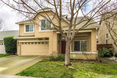 Chico Single Family Home For Sale: 1873 Rose River Avenue
