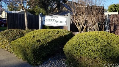 Chico Condo/Townhouse For Sale: 1412 N Cherry Street #3