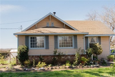 Red Bluff Single Family Home For Sale: 12015 State Highway 99e
