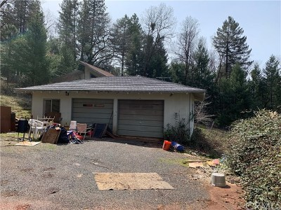 Oroville Single Family Home For Sale: 4971 Maple Spring Road
